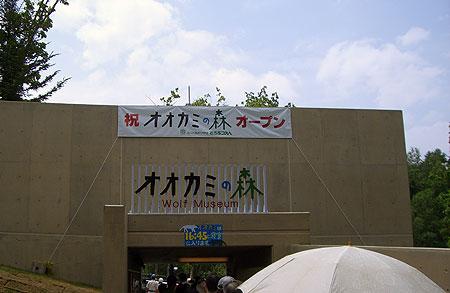 CIMG4958.jpg