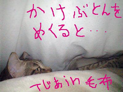 jj09_0013.jpg