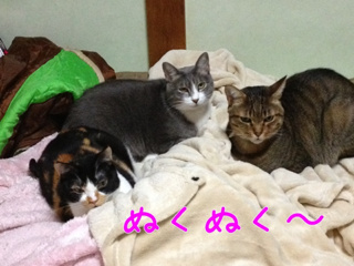 image-20131018203842.png