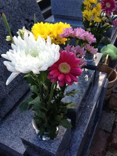 image-20131228030252.png